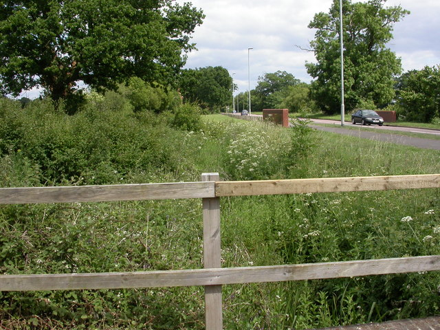 Wimborne, drain