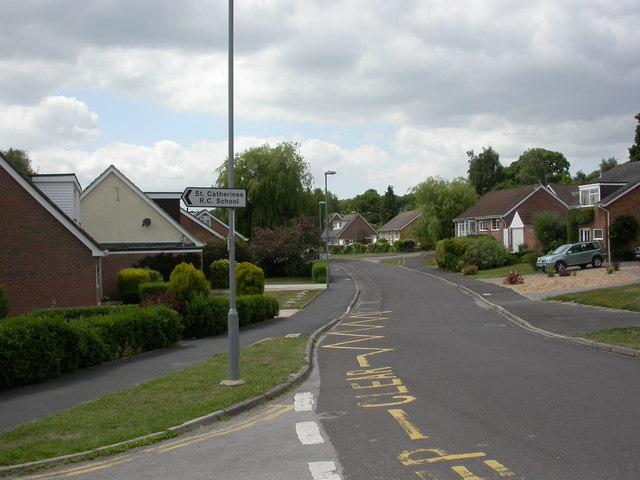 Colehill, bungalows