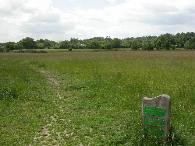 Colehill, Bytheway Field
