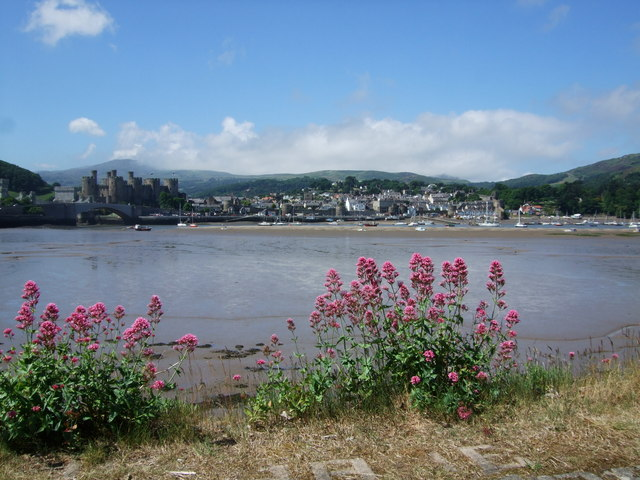 Conwy Town from Deganwy side of the river