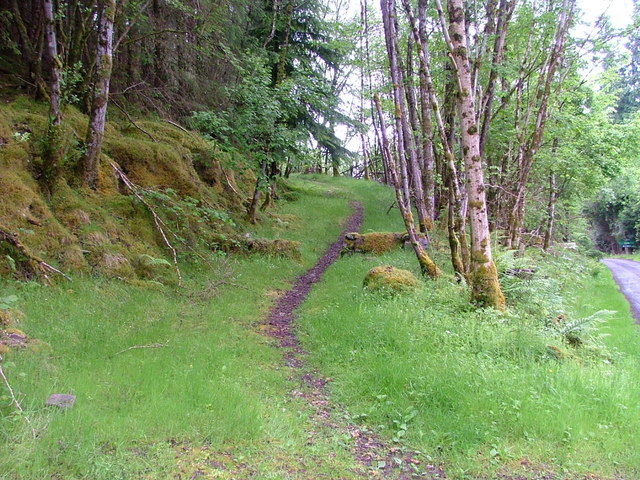 Path in Inverfarigaig forest