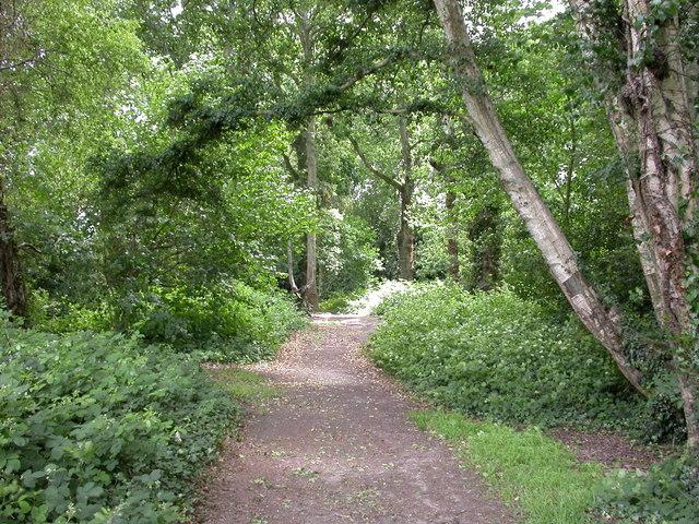 Colehill, footpath