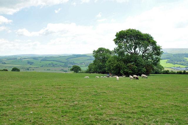 Farmland near Aughton