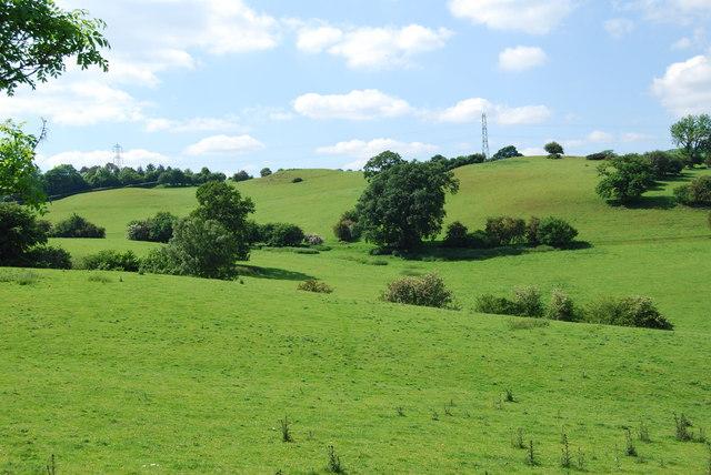 Extensive upland grazing