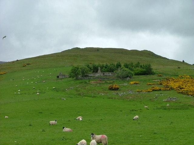 Grazing land at Milton