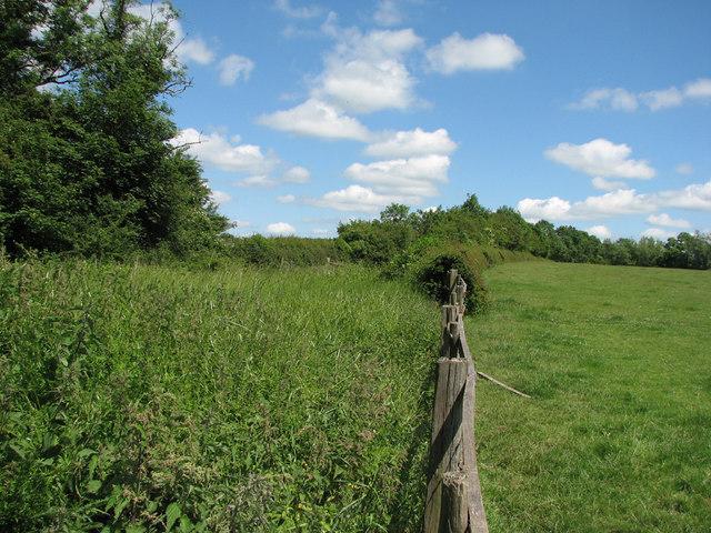 Trackbed of ironstone railway near White Lodge