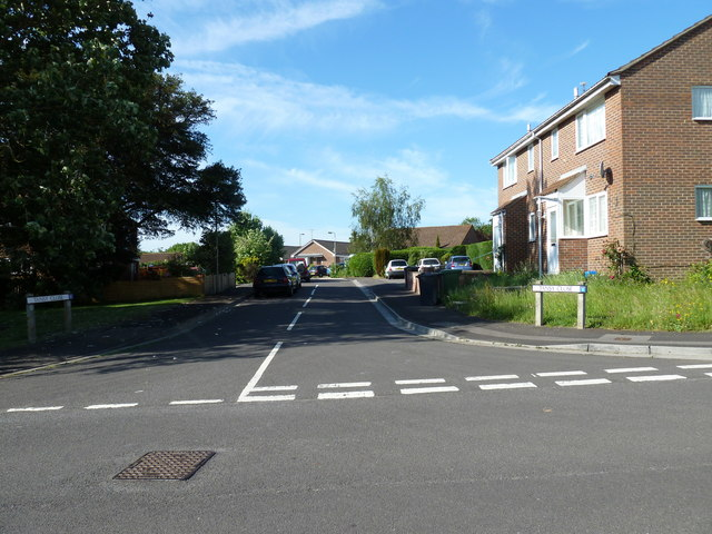 Looking from Spruce Avenue into Tansy Close