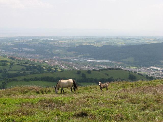 View from Twmbarlwm