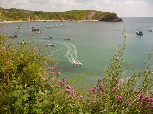 West Lulworth: view down across the Cove