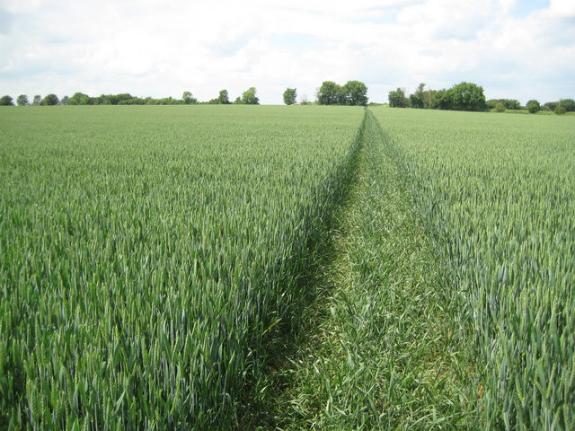 Ickleford: Footpath to Holwell