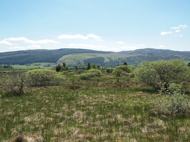 Scrub, south of Knock of Balmyle