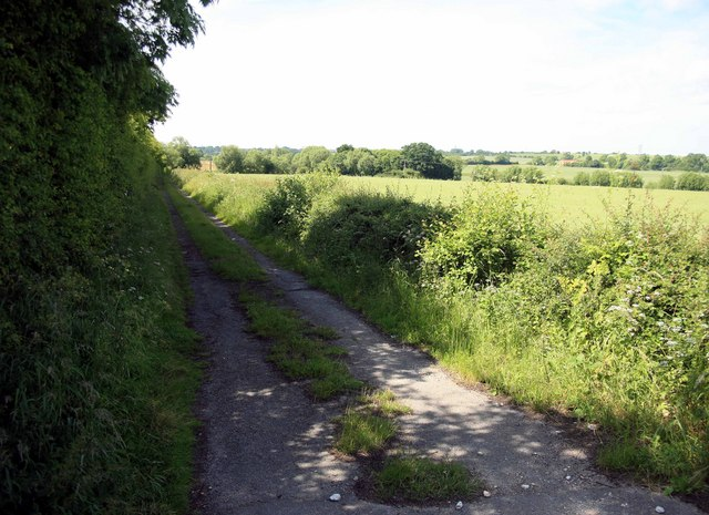 Footpath by the A1