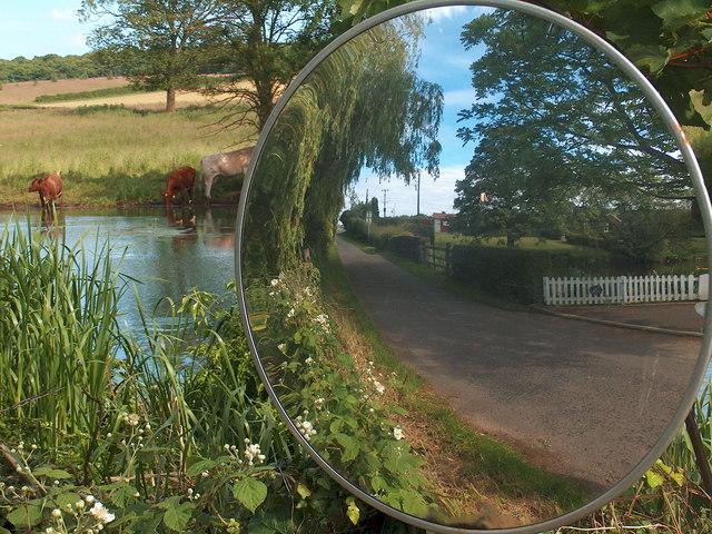 Mirror and mill pond at Cuckney, Notts