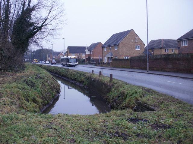 Pontygwew Reen, Duffryn, Newport