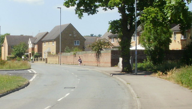 Houses on a bend in Lighthouse Road, Newport