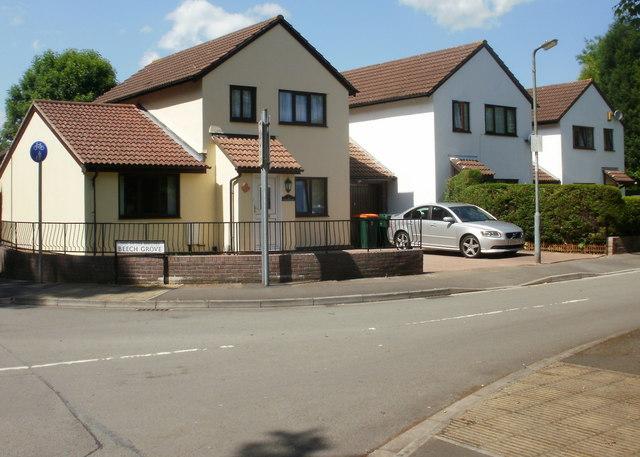 Beech Grove, Newport