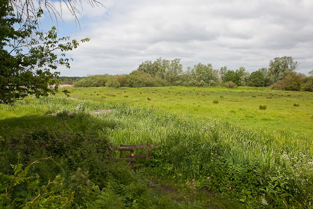 Water meadows west of River Avon