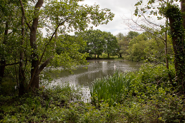 Lake south of Sewage Treatment Works