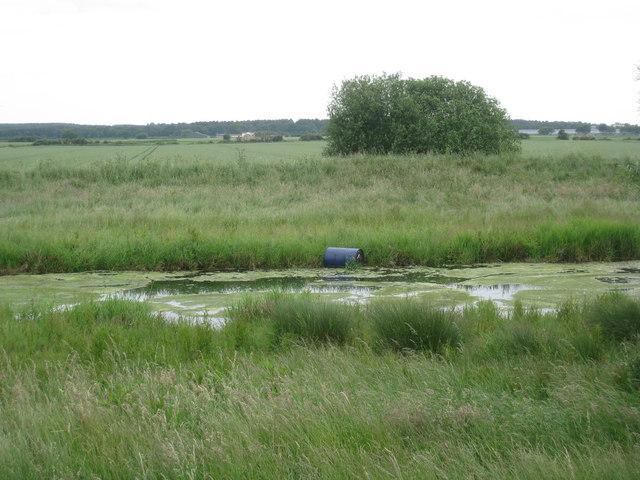 Barrel on the River Eau