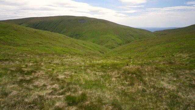 White wisp Hill