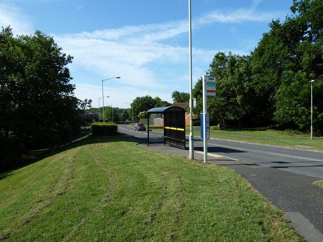 Bus shelter opposite Jasmine Grove in Frendstaple Road