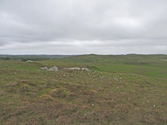 Peatland near Borgie