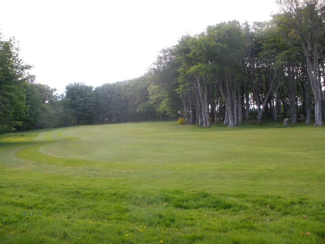 Trees on Stornoway Golf Course
