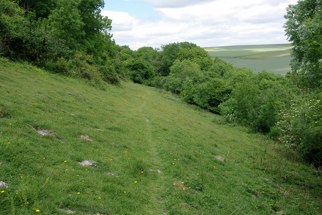 Downland along the footpath