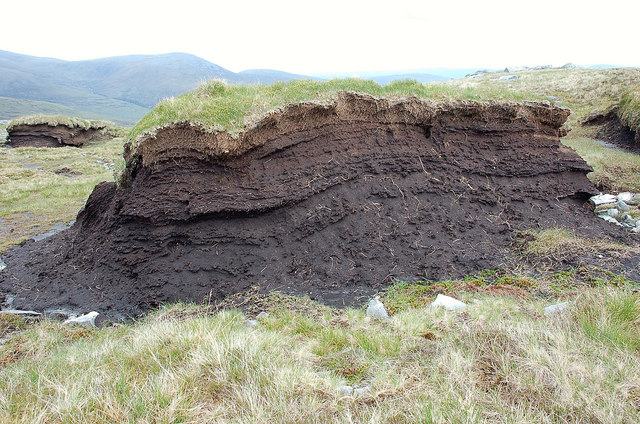 Section of a peat hag