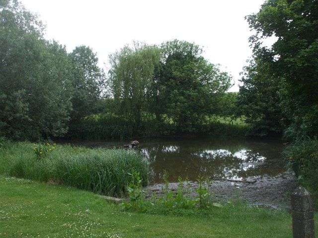 The pond, West Ilsley