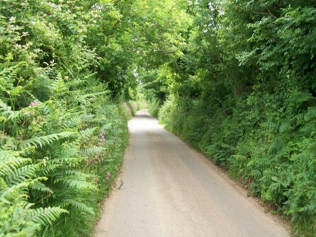 The road east of Capel Bethel, Penrhos