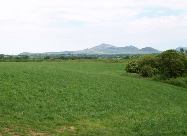 View northwards across cultivated grass towards the Eifl Hills