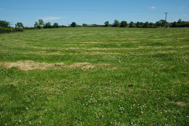Recently mown field near Cookhill