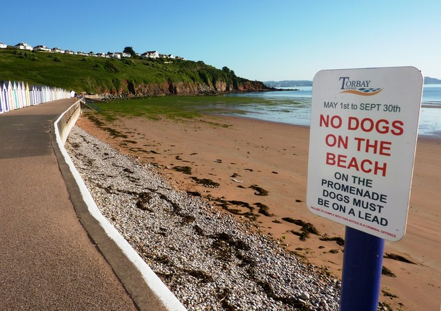No dogs on the beach, Broadsands