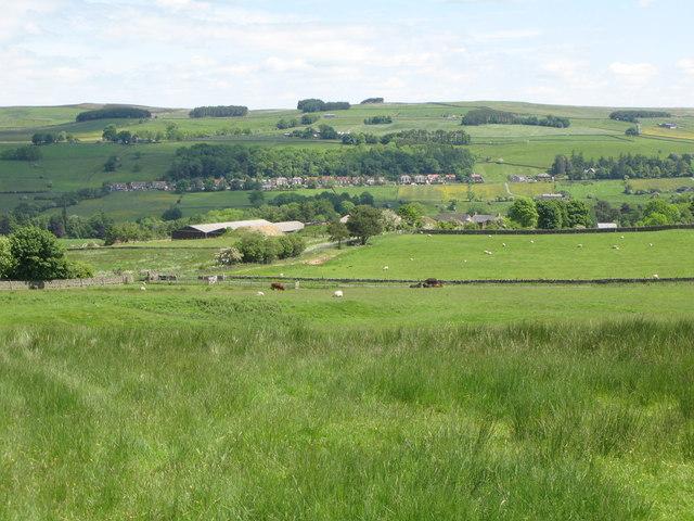 Pastures north of High Broadwood Hall
