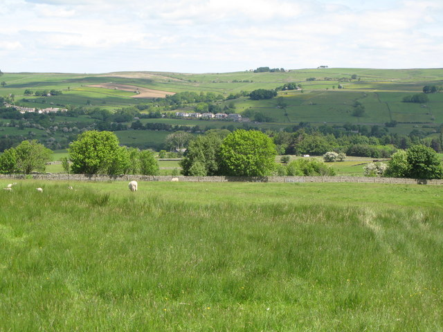 Pastures west of Juniper House