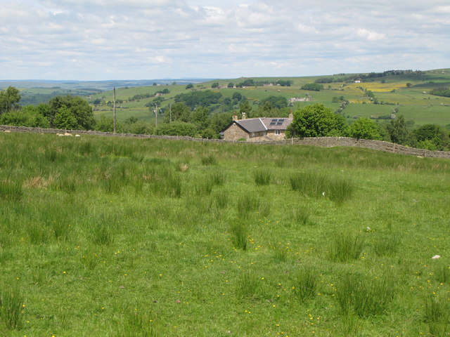 Pastures near Cleugh Head