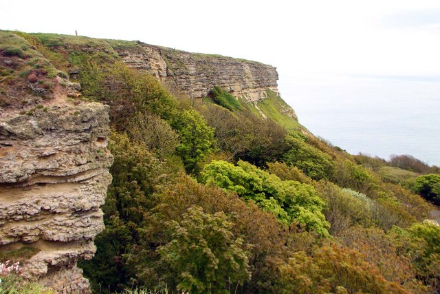 Gore Cliff at Blackgang