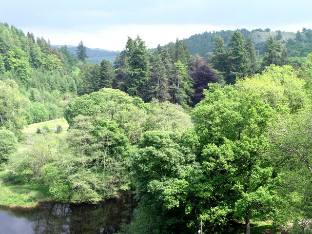 Woodland below the dam at Lake Vyrnwy