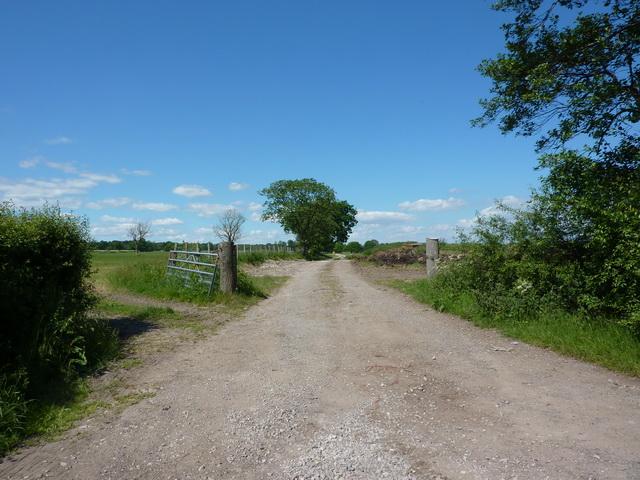 Track off Gisburn Road near Raygill Moss