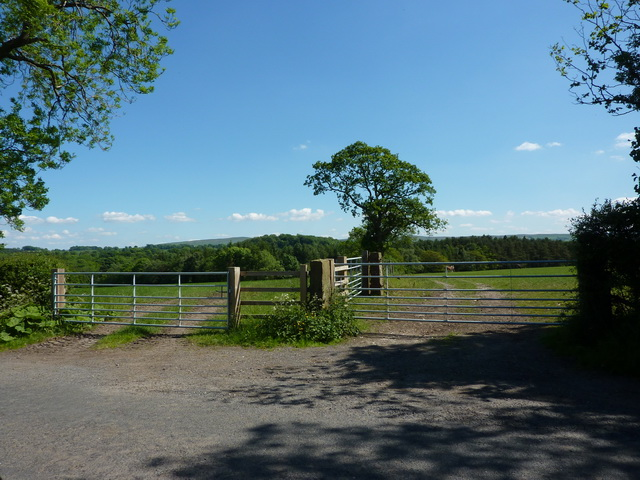 Double gates south side of Gisburn Road