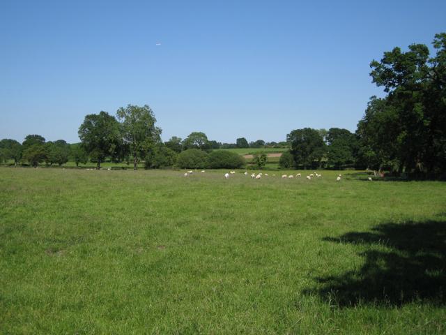 Farmland north of Oakslade Farm