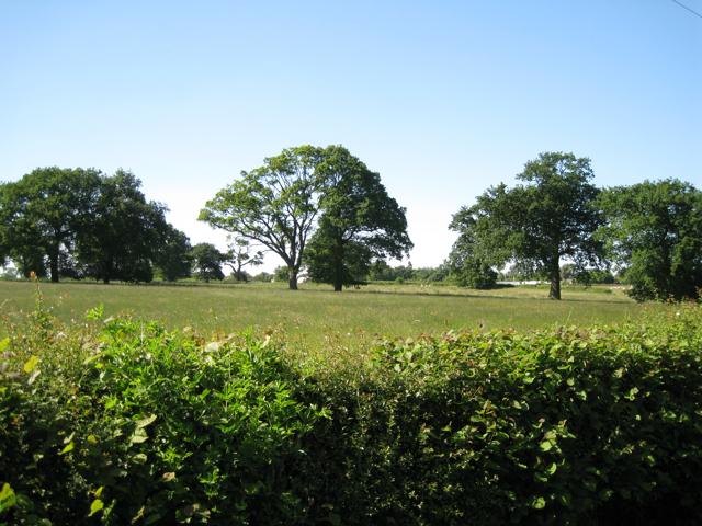Amalgamated fields northeast of Moonpiece Barn