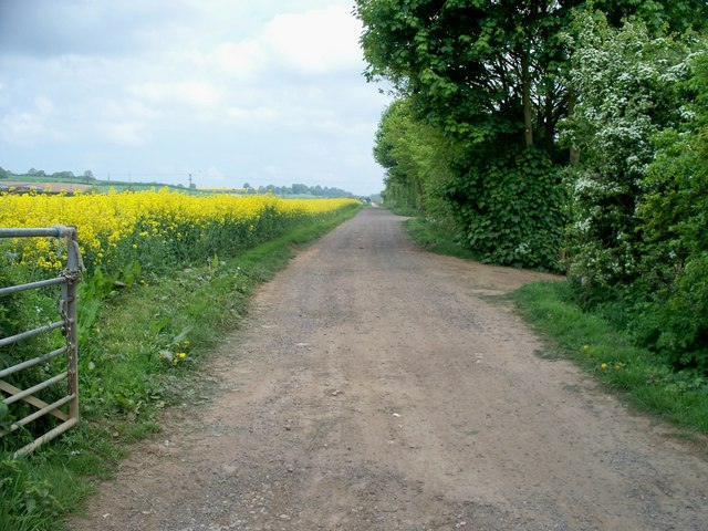 Nash's Lane