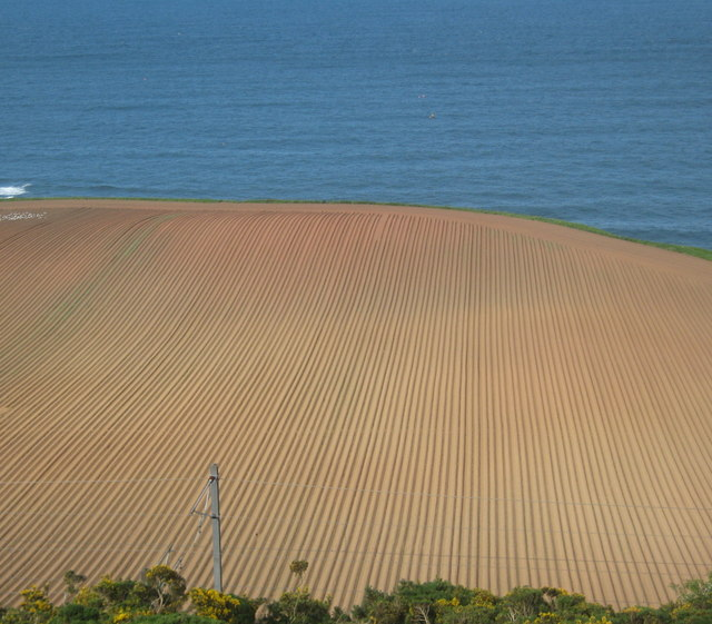 Field ploughed and set above Ross Point