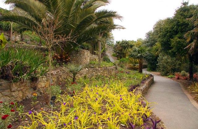 Path through Ventnor Botanic Gardens