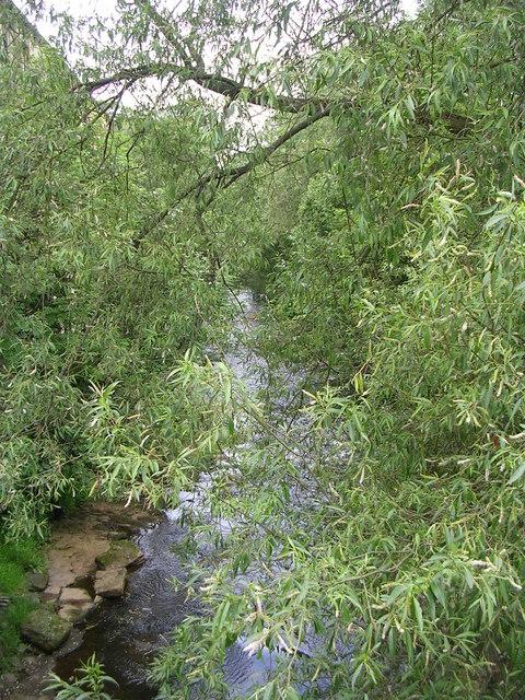 River Holme - Northgate