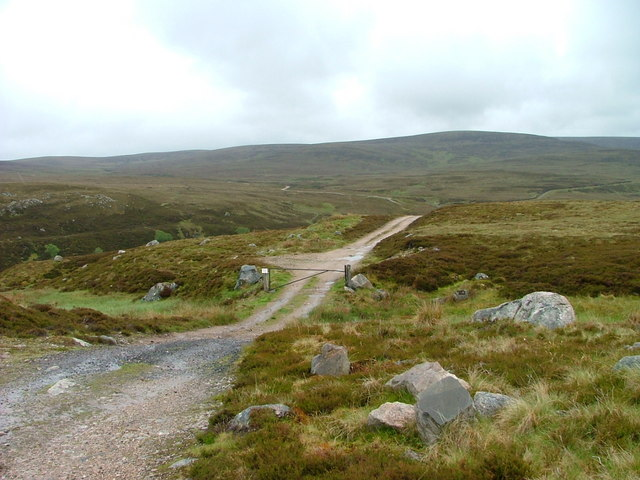 Estate track on the grouse moor