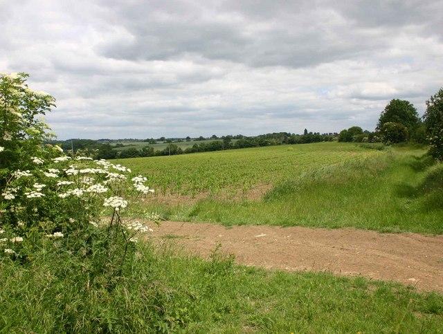 Field near Granby Farm