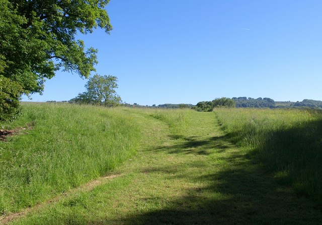 Path near Milton Lodge
